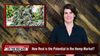 How Real is the Potential in the Hemp Market?